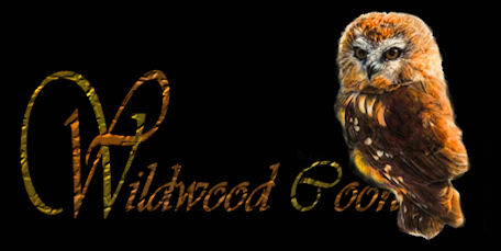 picture for wildwoodcoons